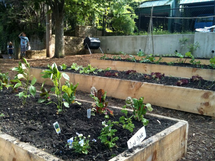 Annapolis Elementary School Raised Beds