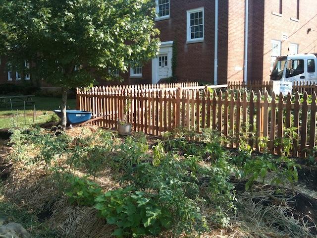 Gleaning Plots