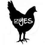 YES to Annapolis Chickens!