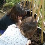SSES P4 KIDS PLANT CLOSE